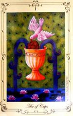 cups1_R.jpg